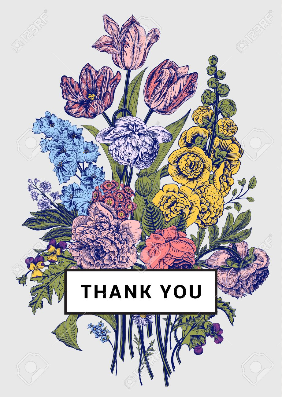 Vintage floral card. Victorian bouquet. Colorful peonies, mallow, delphinium, roses, tulips, violets, petunia. Thank you. Vector illustration. - 43466654
