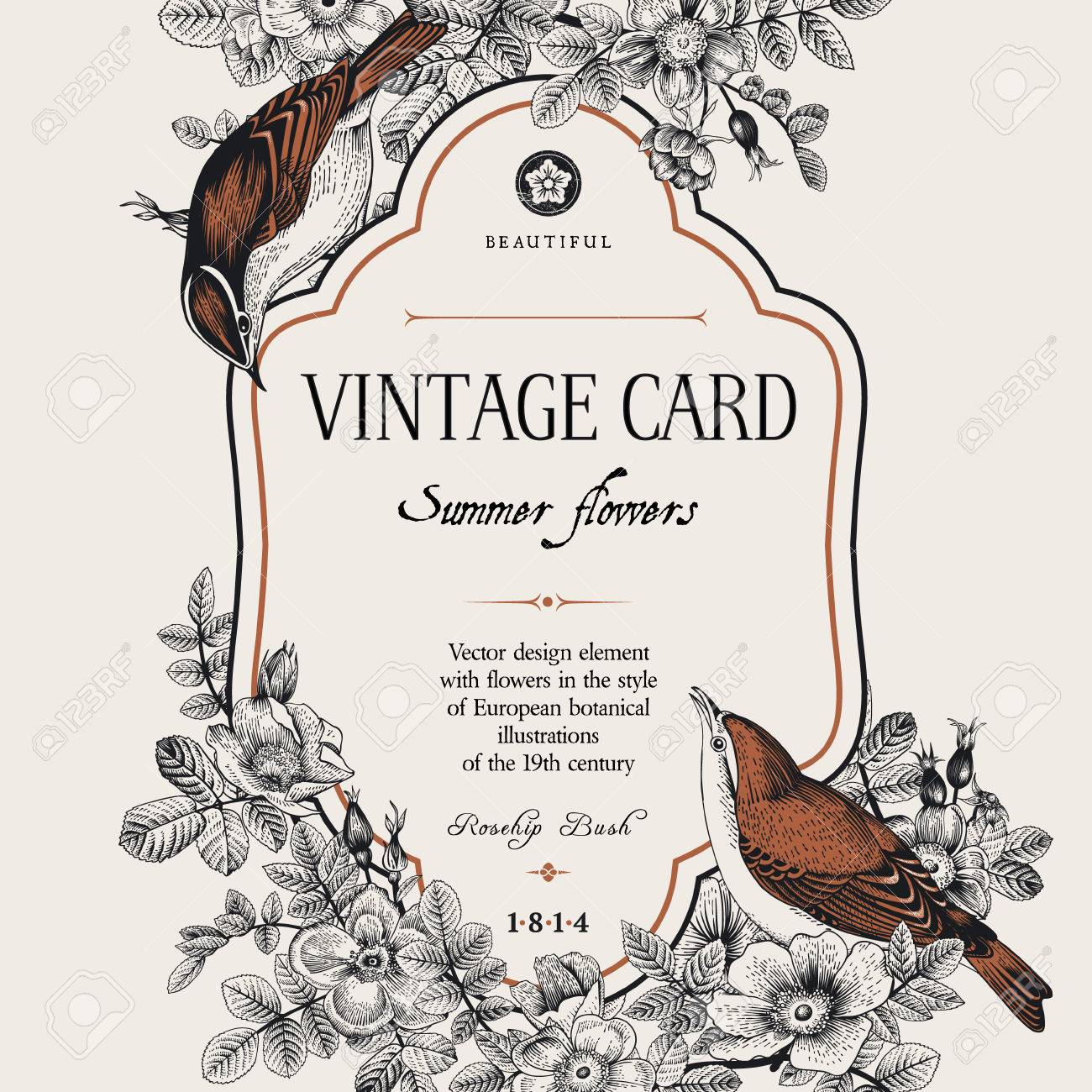 Vector vintage floral card. Two birds in the wild rose bushes. Stock Vector - 45602583