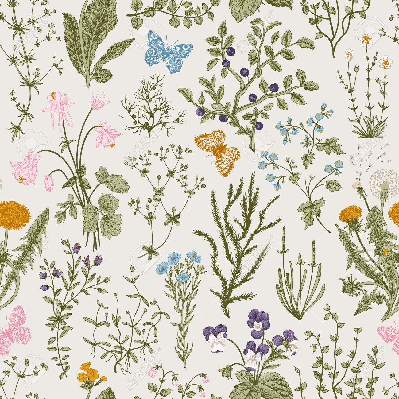 Vector vintage seamless floral pattern. Herbs and wild flowers. Botanical Illustration engraving style. Colorful - 53275962