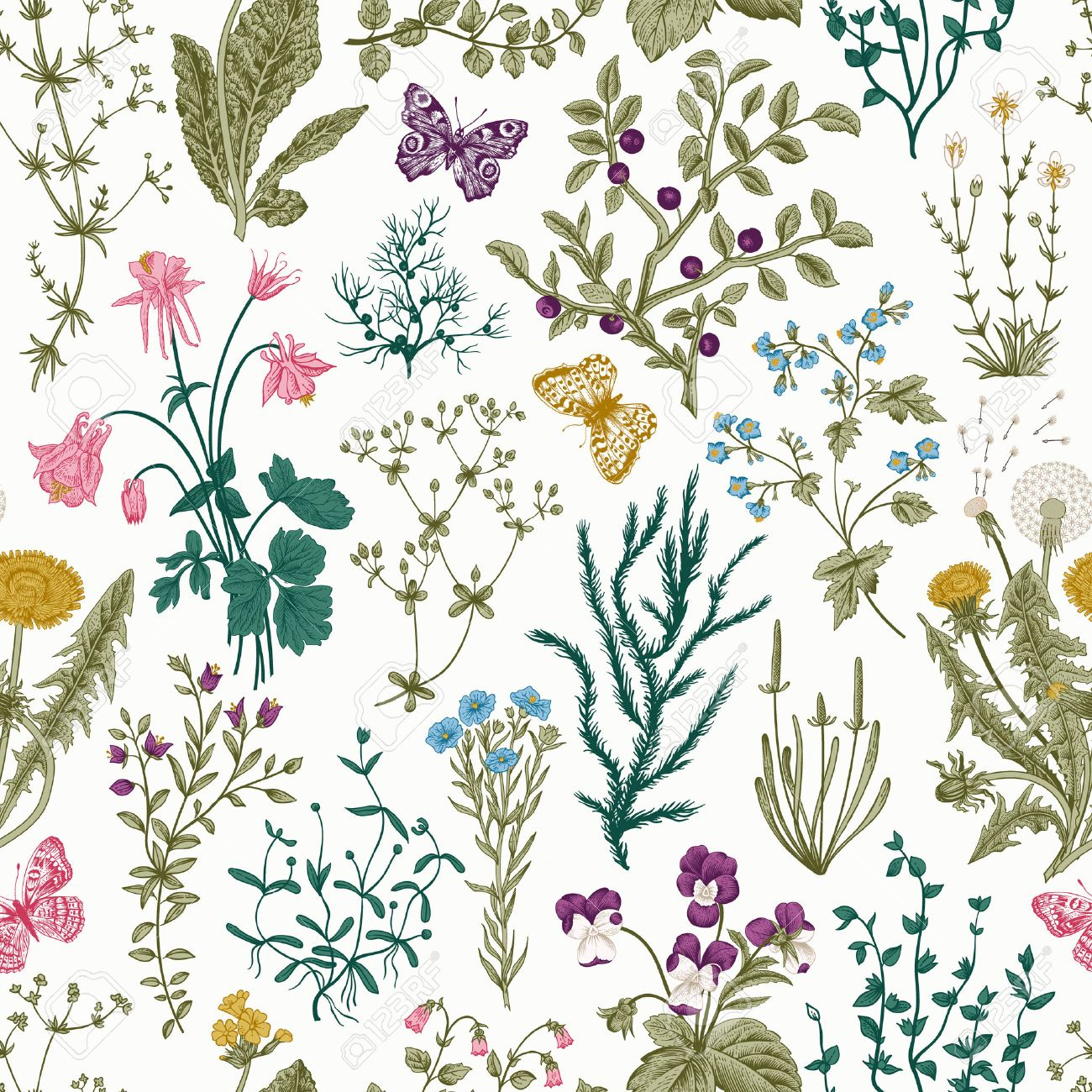 Vector vintage seamless floral pattern. Herbs and wild flowers. Botanical Illustration engraving style. Colorful - 53275966