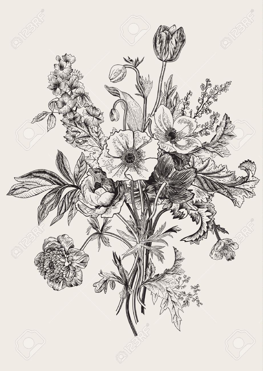 Victorian bouquet. Spring Flowers. Poppy, anemones, tulips, delphinium. Vintage botanical illustration. design element. Black and white. Engraving - 55014551