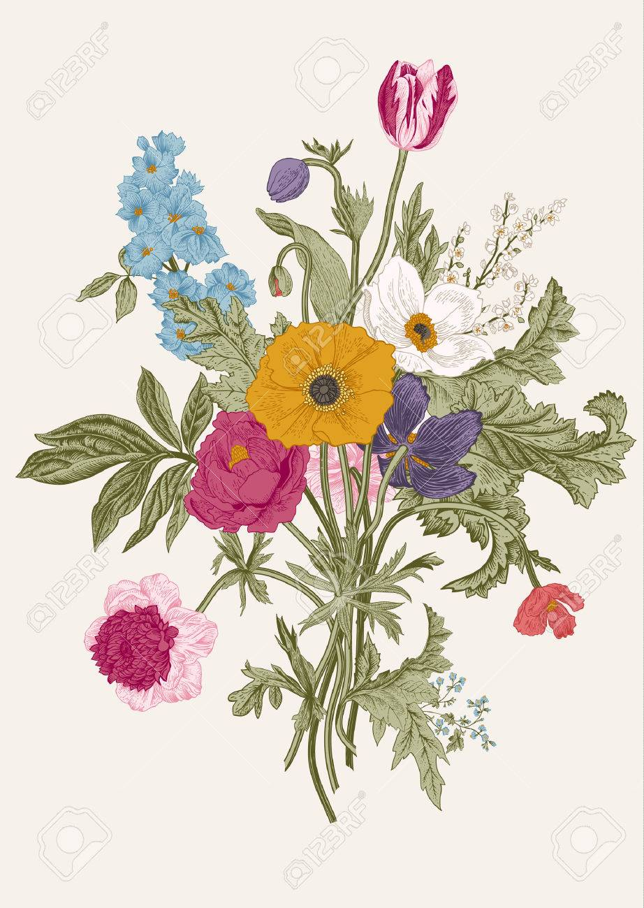 Victorian bouquet. Spring Flowers. Poppy, anemones, tulips, delphinium. Vintage botanical illustration. design element. - 55015509
