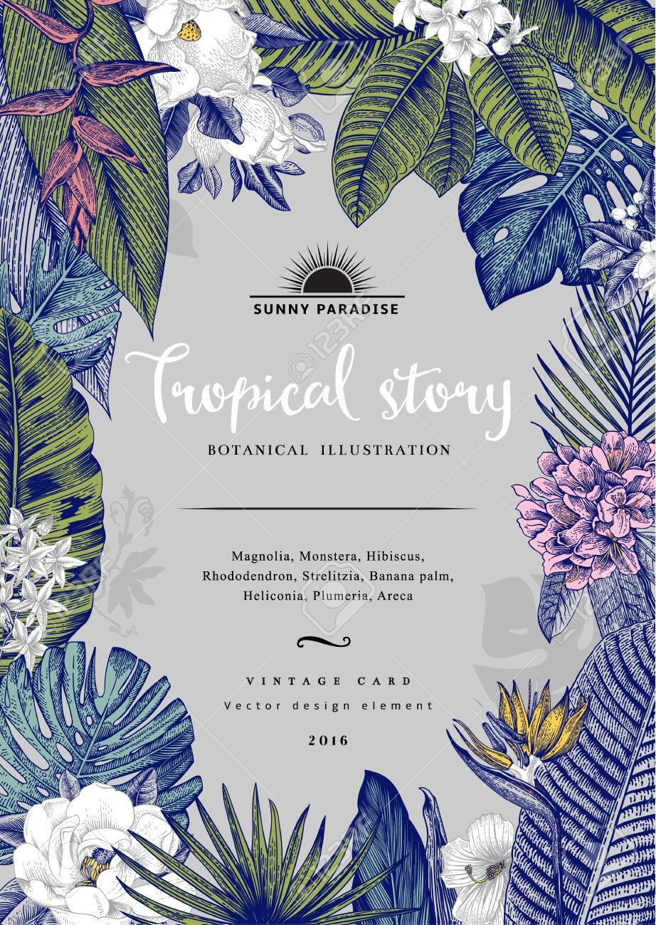 vintage card Botanical illustration. Tropical flowers and leaves. - 59921651