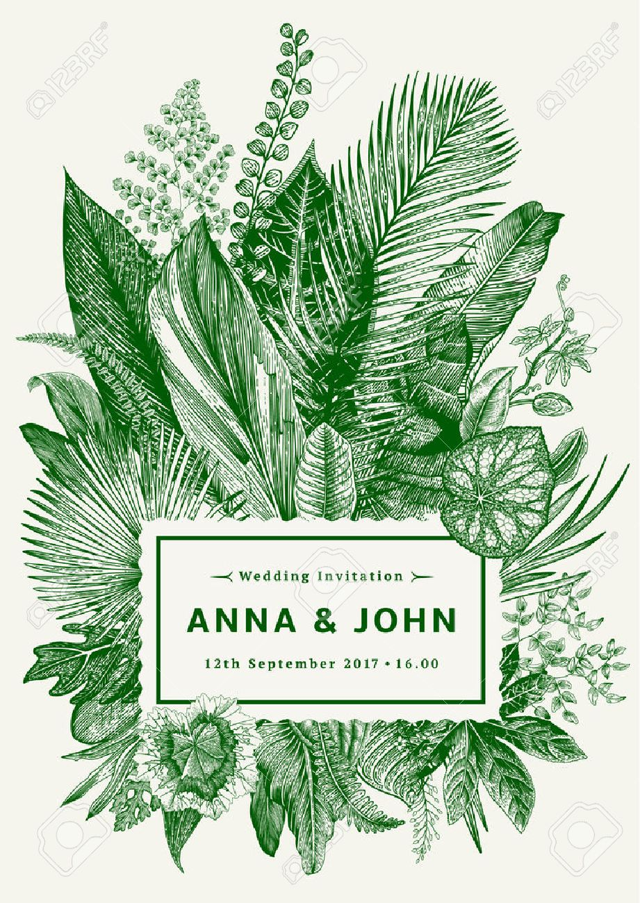 Vector vintage card. Wedding invitation. Botanical illustration. Tropical leaves. Green. - 69111863
