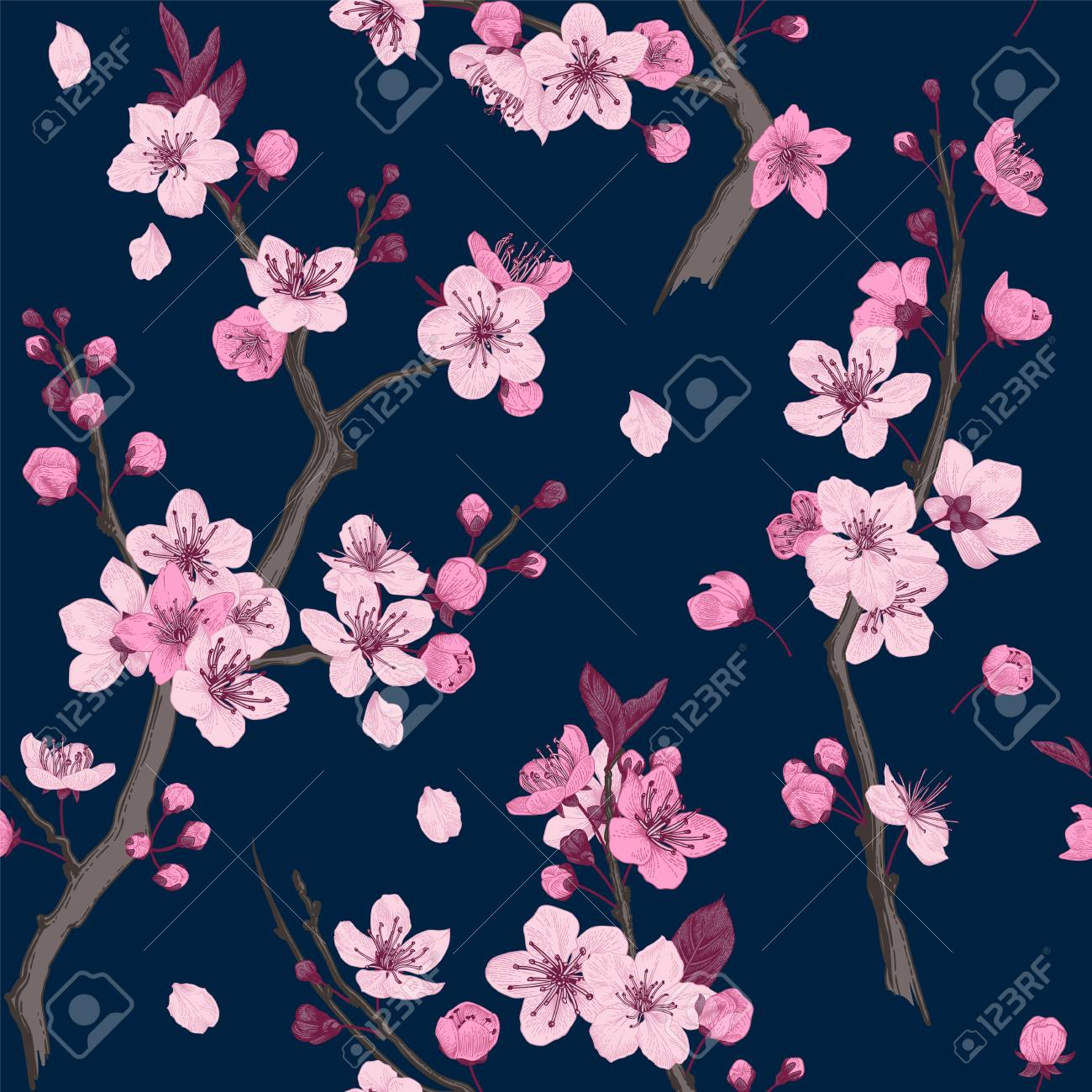 Sakura. Seamless pattern. Pink Cherry blossom branches. Vector botanical illustration. - 93216376