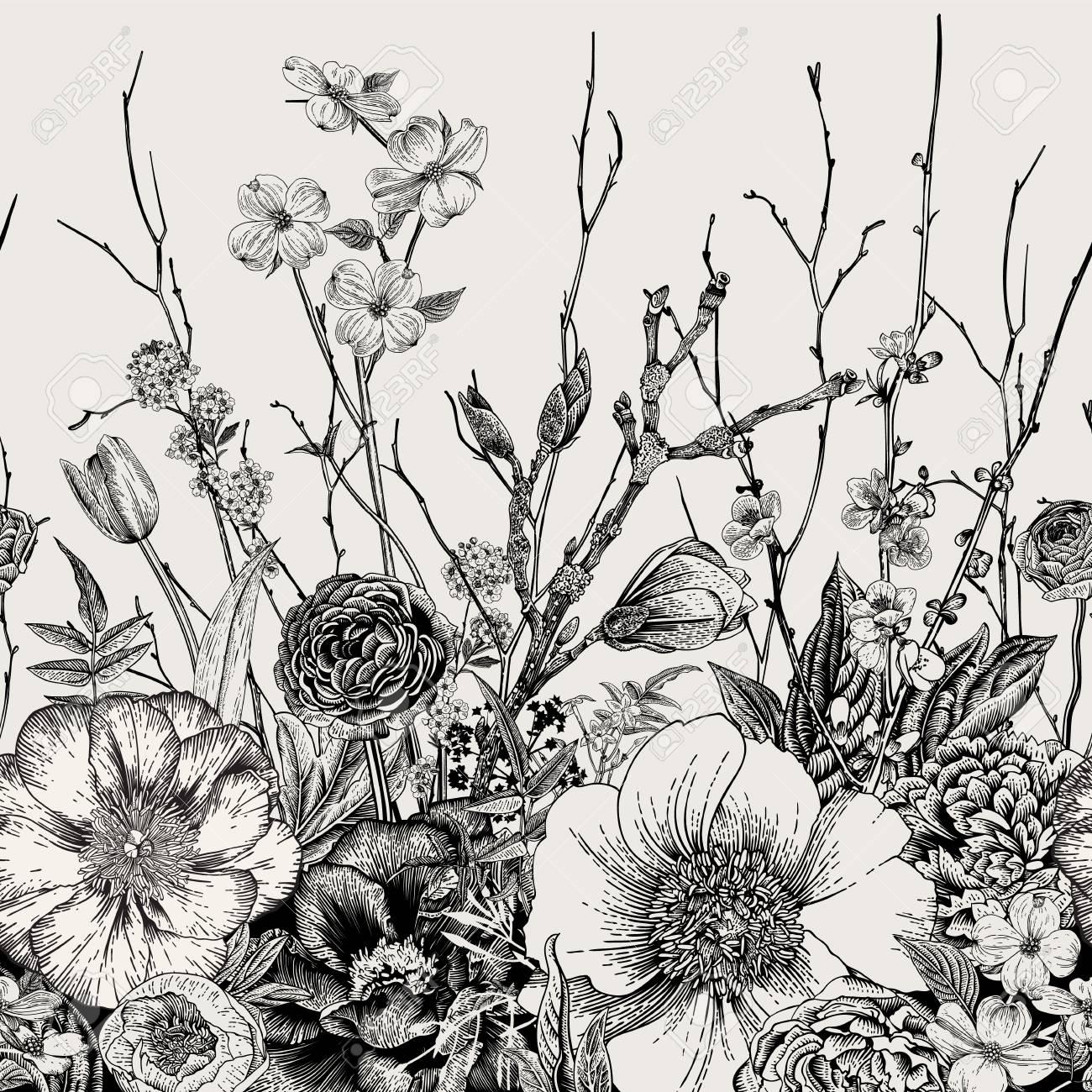 Seamless border. Spring Flowers and twig. Peonies, Spirea, Cherry Blossom, Dogwood. Vintage botanical illustration. Black and white - 96594262