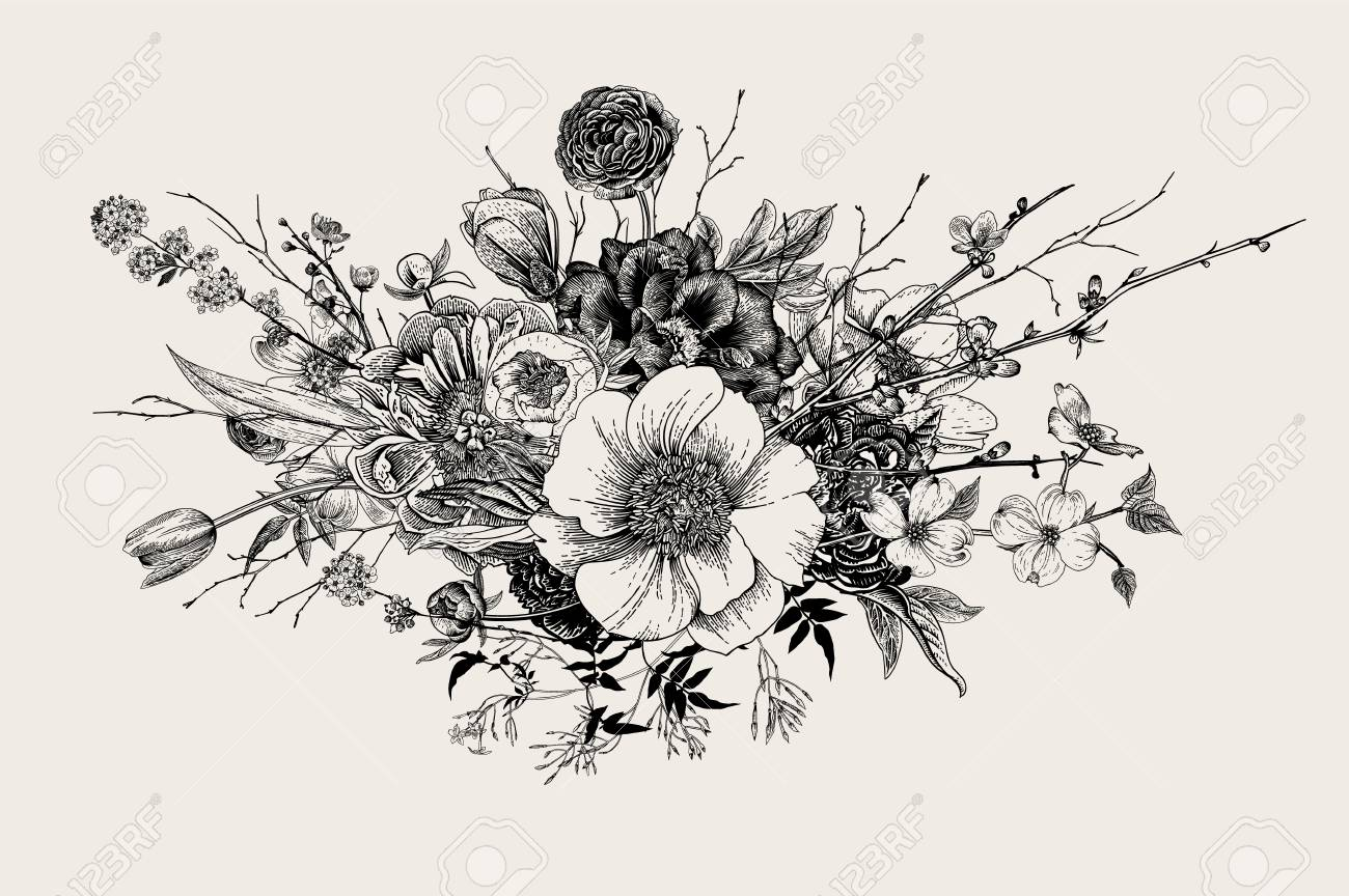 Bouquet. Spring Flowers and twigs. Peonies, Spirea, Cherry Blossom, Dogwood. Vintage botanical illustration. Black and white - 96566752