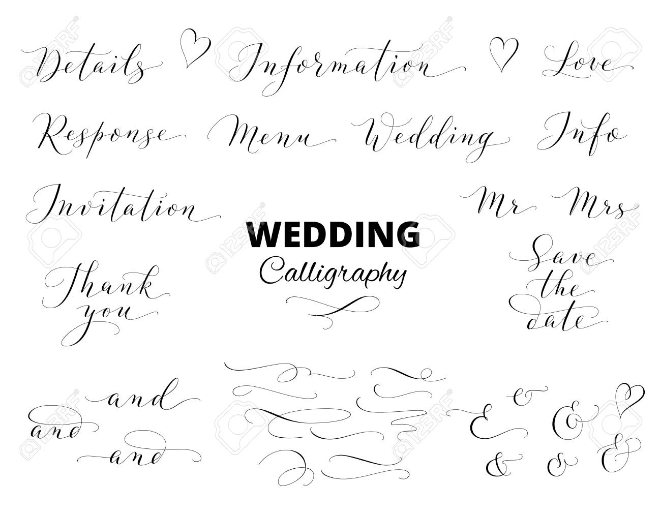 Wedding Hand Written Calligraphy Set Isolated On White. Great ...