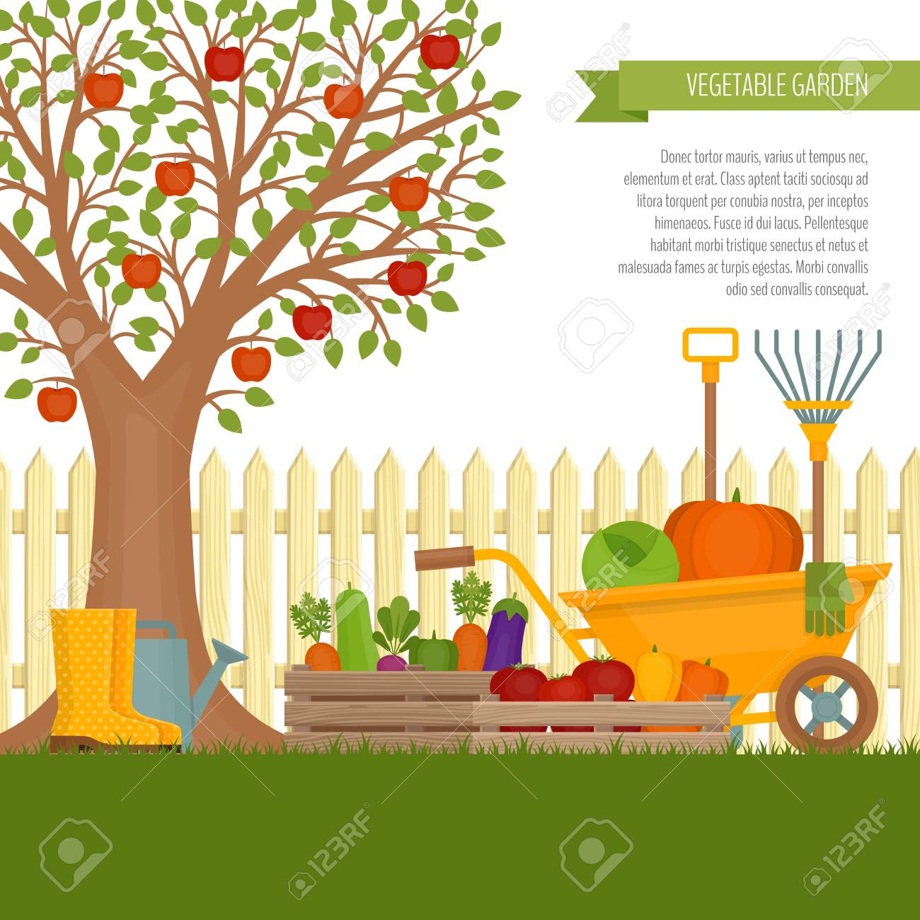 Vegetable Garden Concept Of Gardening Banner With Vegetable Royalty Free Cliparts Vectors And Stock Illustration Image 87429798