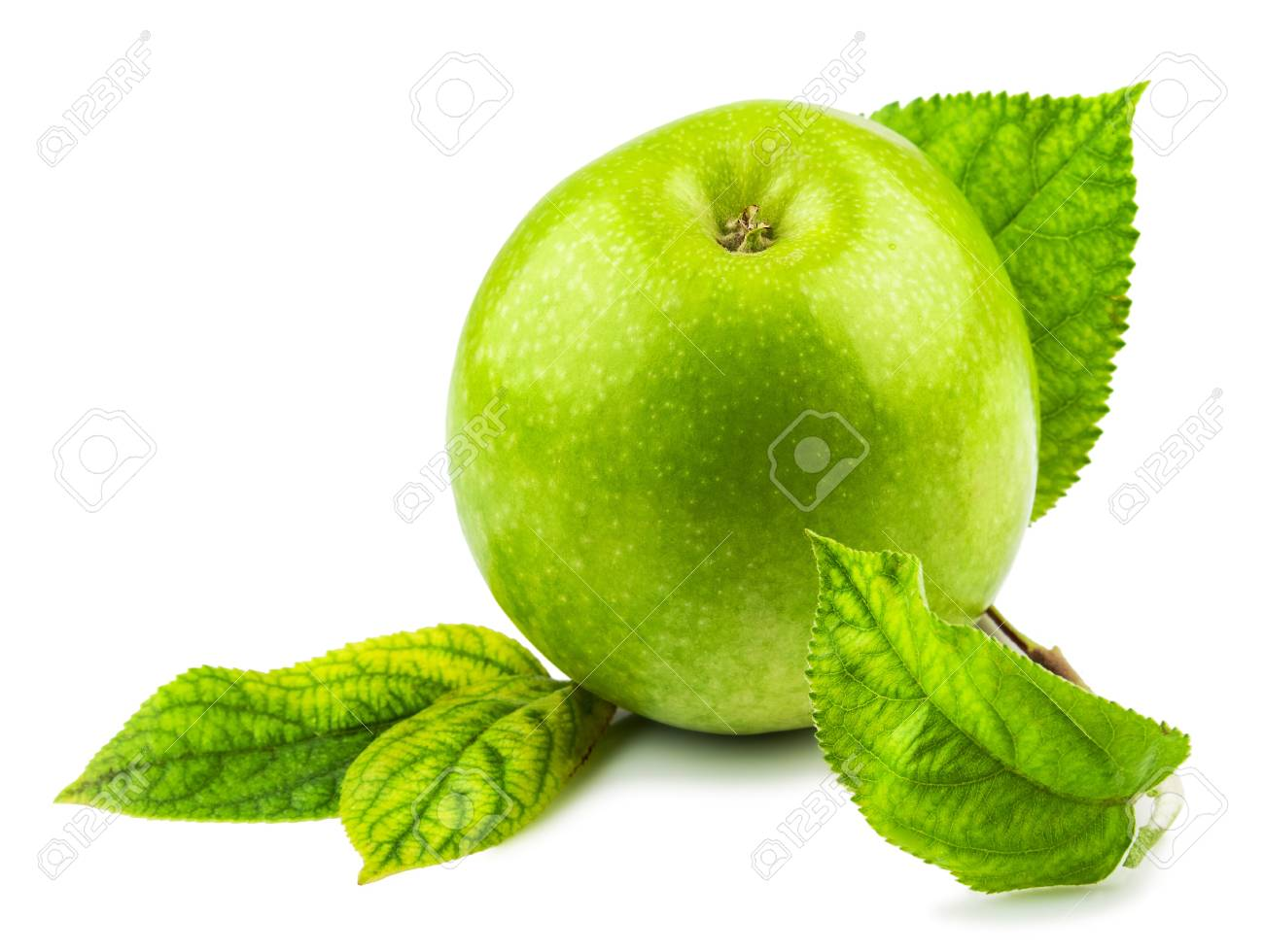 Macro view of green apple with green leaves isolated on white background Stock Photo - 18384558