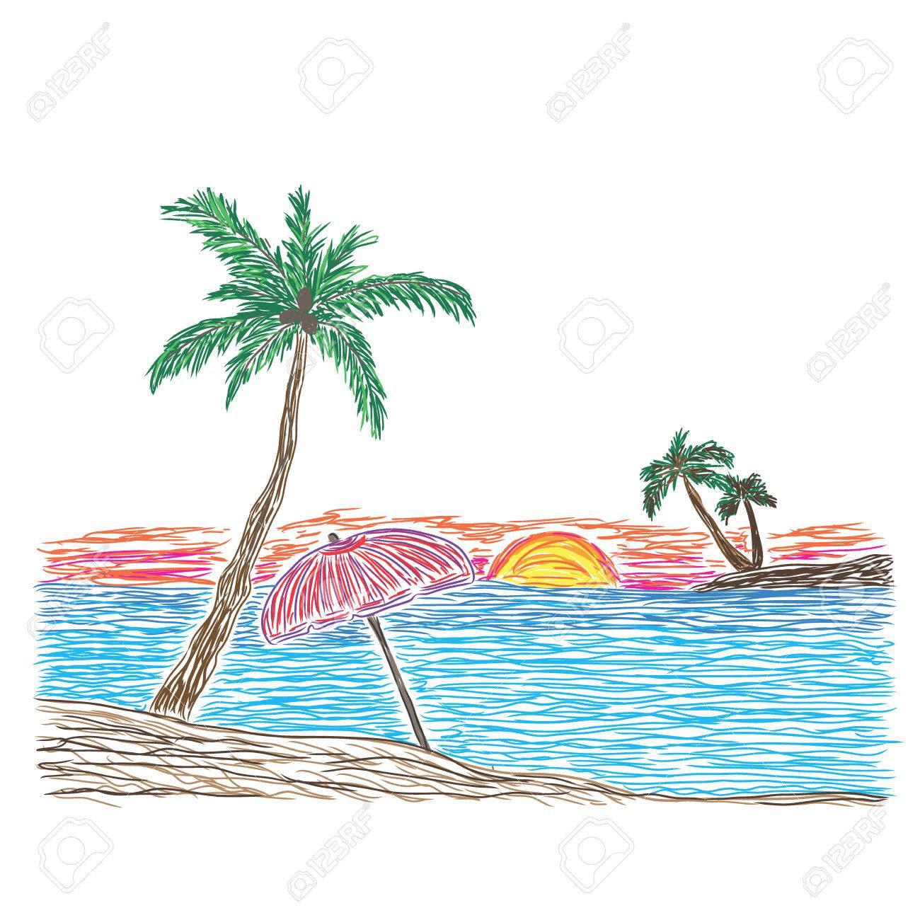 Palmera En Una Playa Dibujo Ilustración Vectorial Tropical