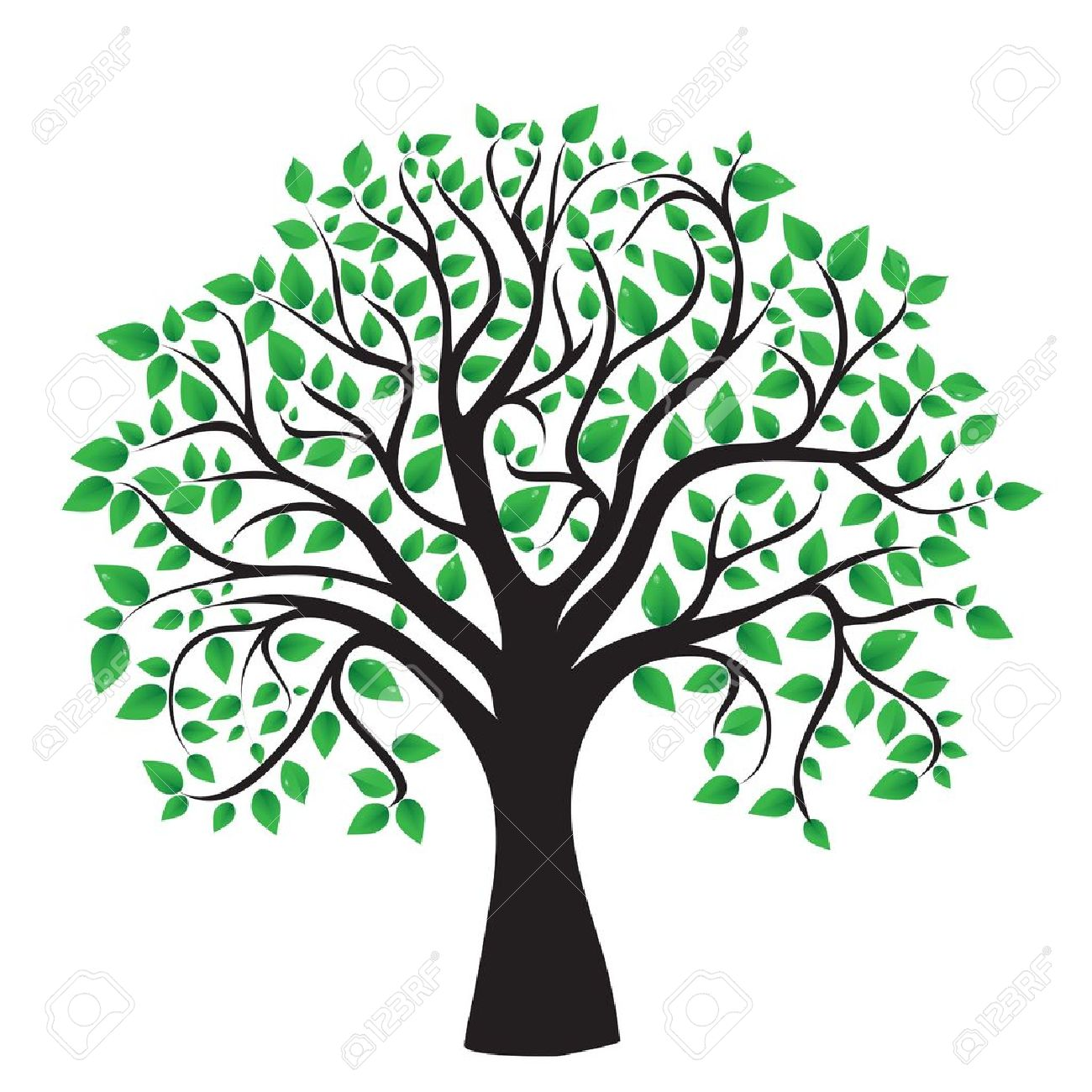 Tree isolated on a white background, vector Stock Vector - 13495695