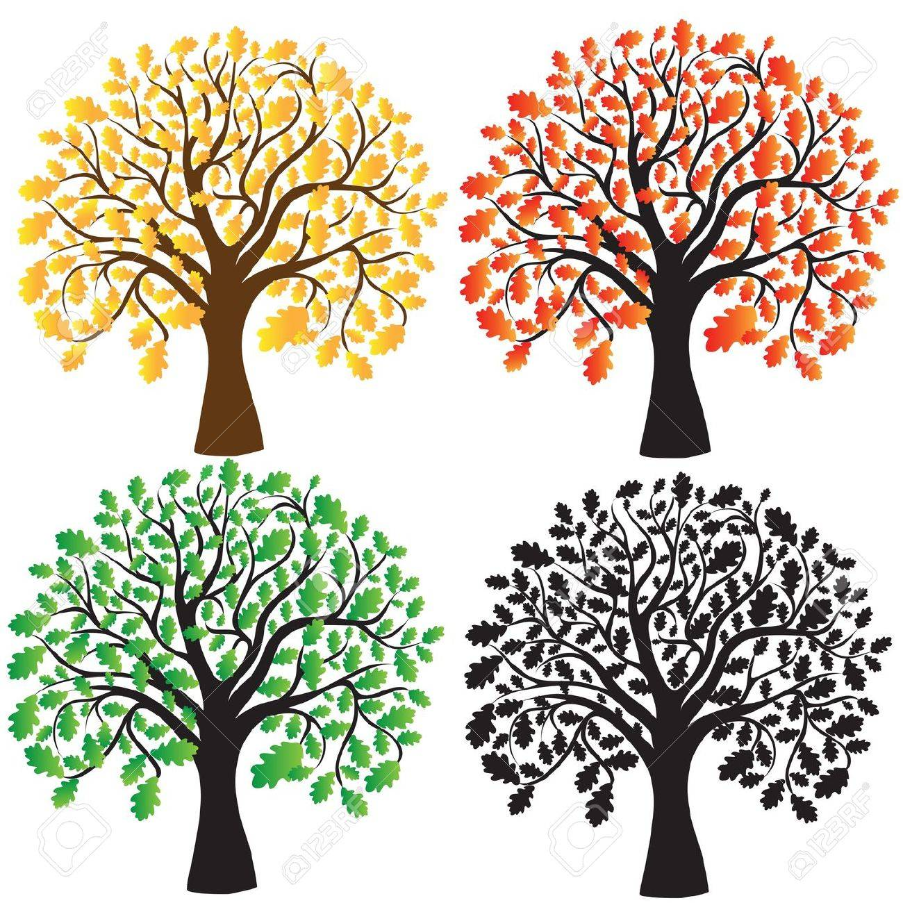 Four oak with yellow, red and green foliage  Ebony Stock Vector - 13835006