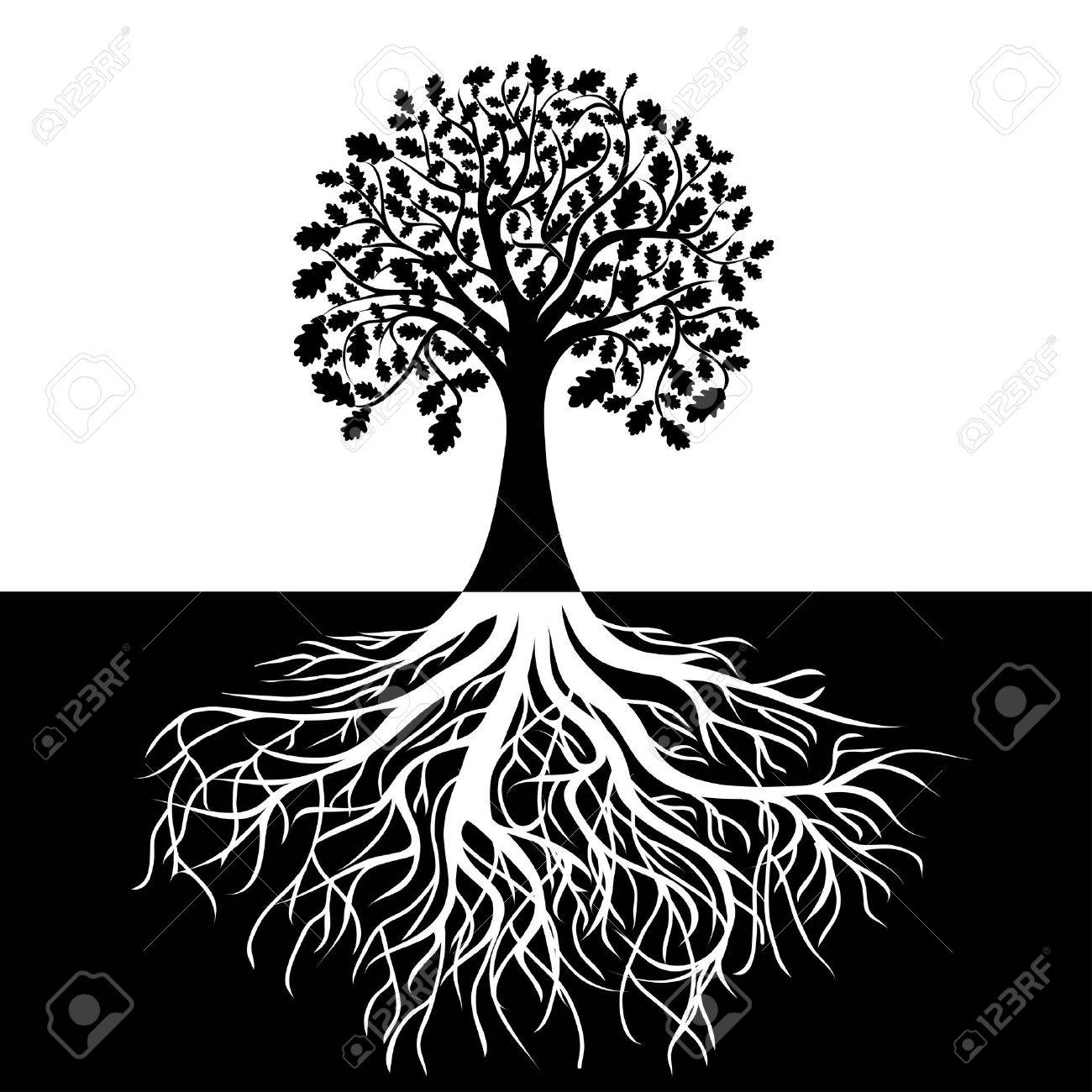 Tree with Roots on Black and white Background Stock Vector - 13994720