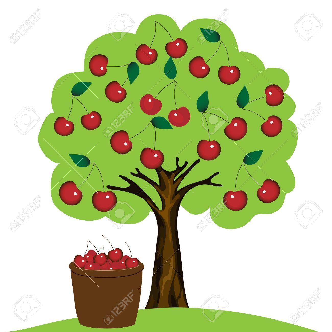 Fruit Bearing Stock Photos Images. Royalty Free Fruit Bearing ...