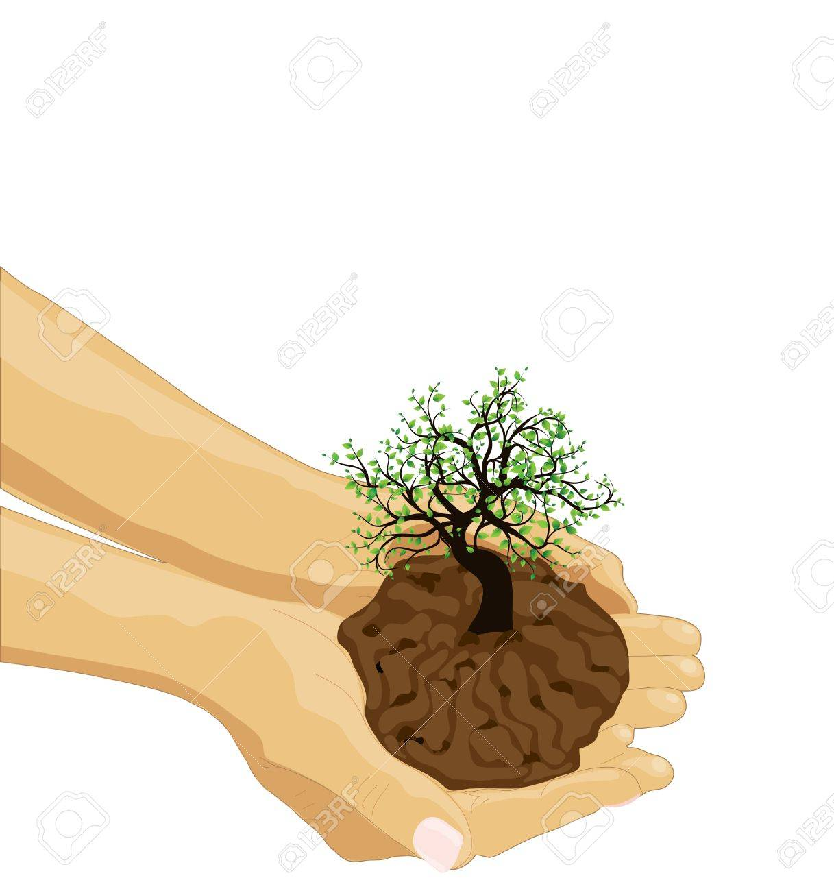 Tree in palm of hand Stock Vector - 14059924