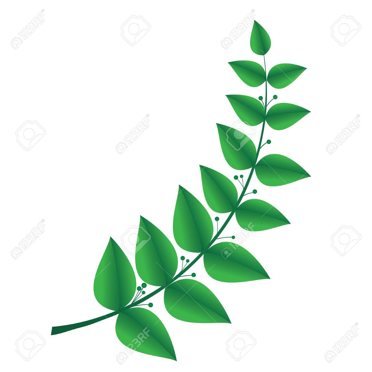 laurel branch, symbol of victory Stock Vector - 14464685