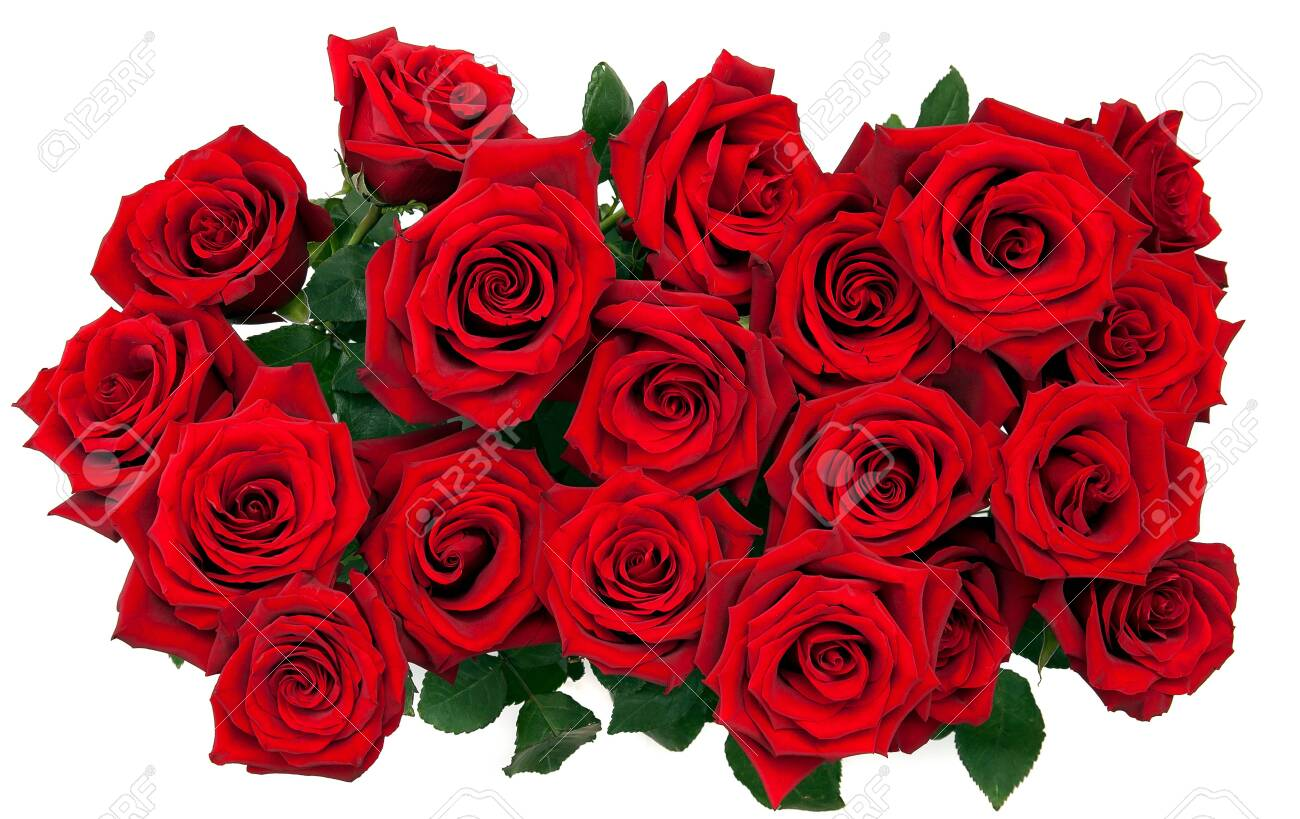 bouquet of red roses on a white background, top view - 153821504