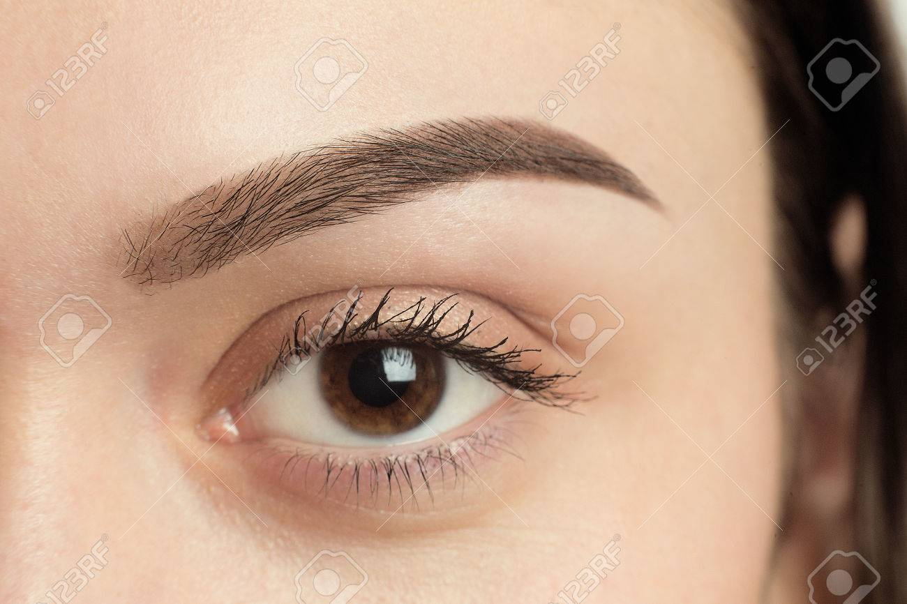 Perfect Eyebrow After Correction. Close-up Macro Photo Of Big ...