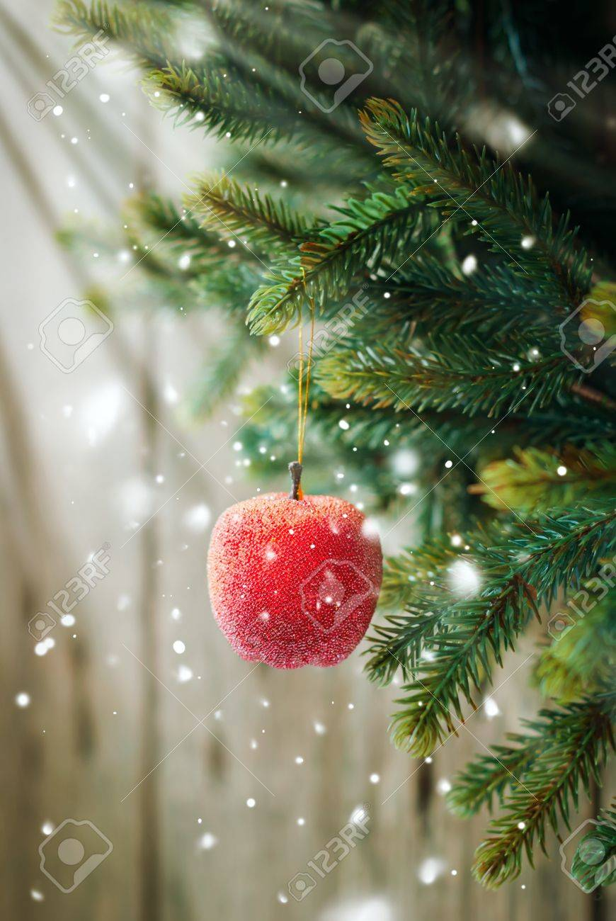 Christmas Composition with Red Apple  on the Branch on Wooden Background Stock Photo - 16616400