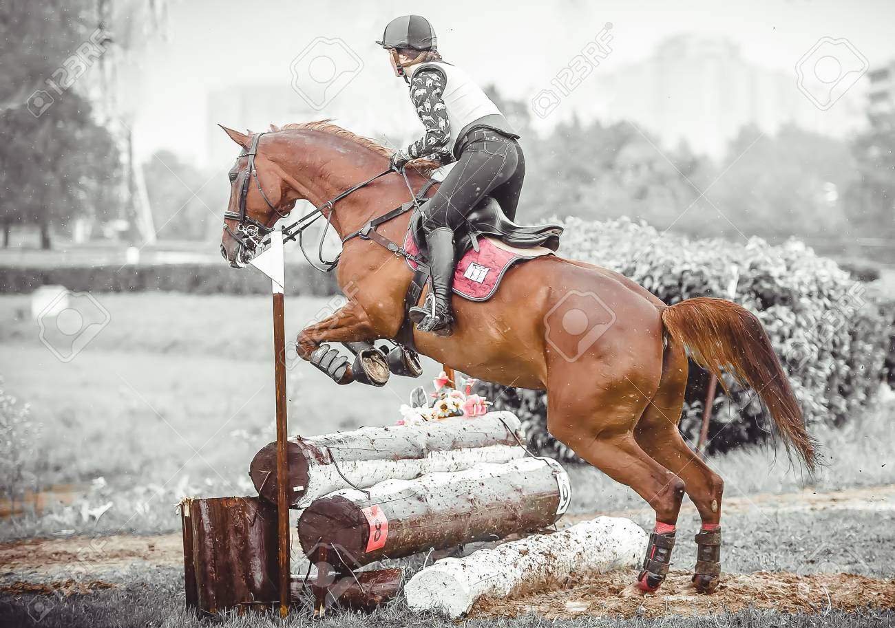 Young Woman Jumps A Horse During Practice On A Cross Country Stock Photo Picture And Royalty Free Image Image 67181455