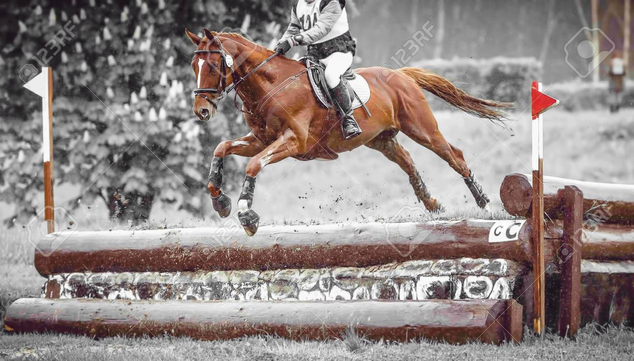 Rider Jumps A Horse During Practice On A Cross Country Eventing Stock Photo Picture And Royalty Free Image Image 67335934