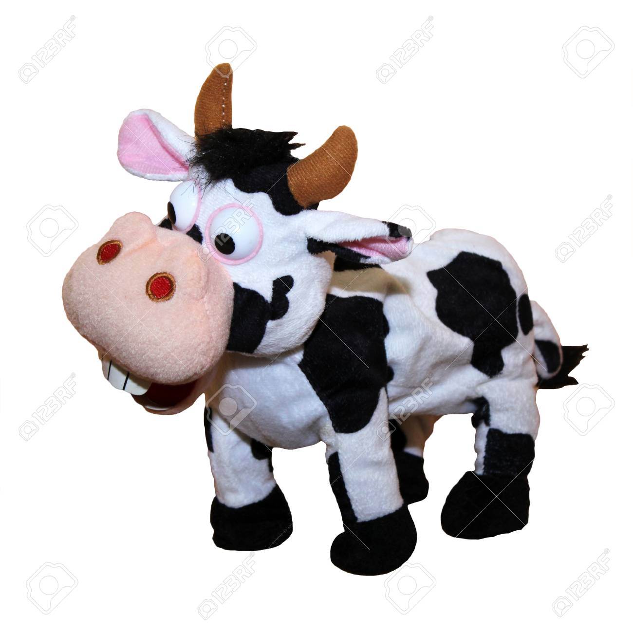 Small Black And White Toy Cow Against White Background Crazy Stock