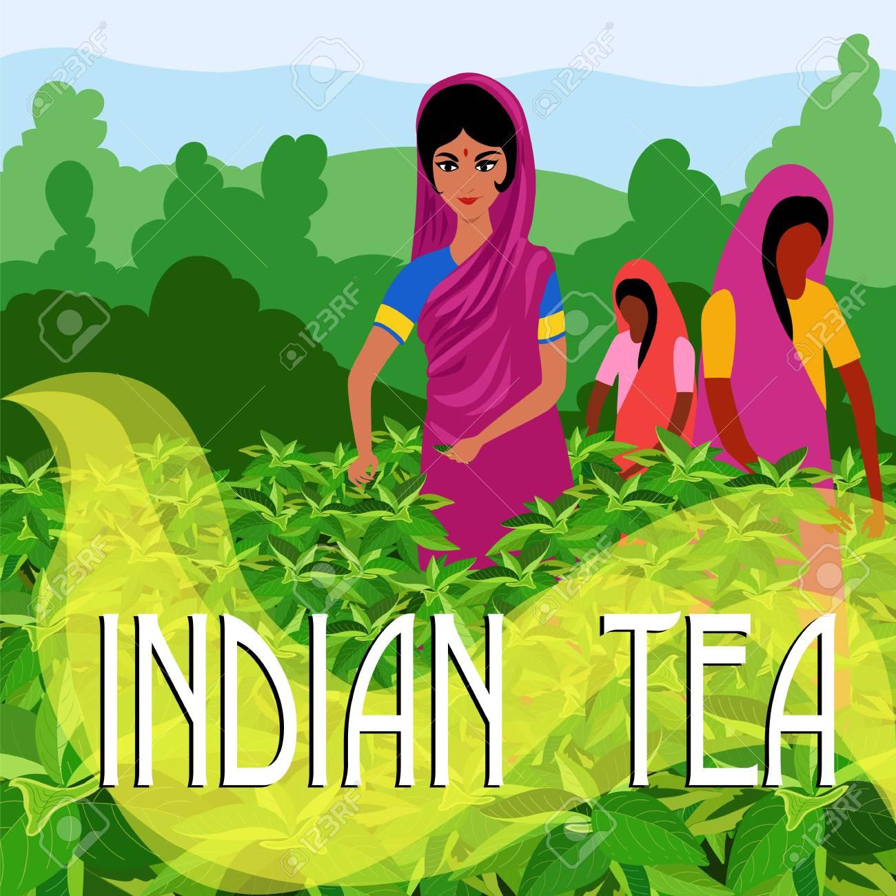 Indian Tea Illustration Stock Vector
