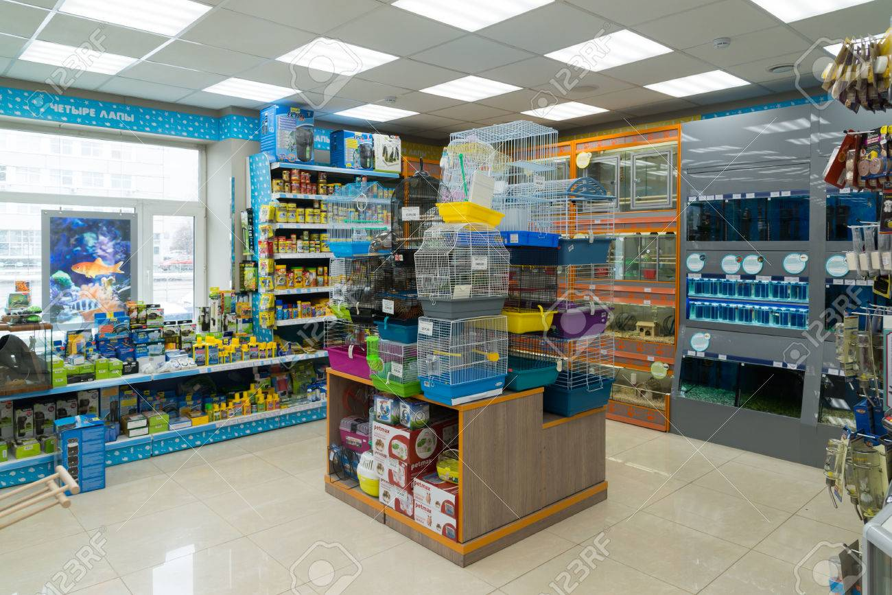 Moscow, Russia - April 16.2016. Interior of Four paws pet store - 55405515