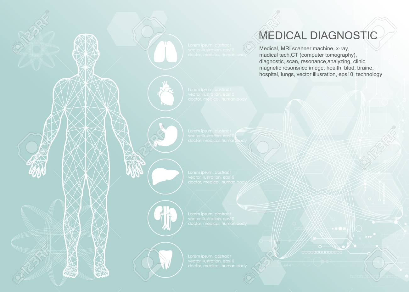 Human Body Health Care, With Medical Icons, Organs, Charts, Diagrams ...