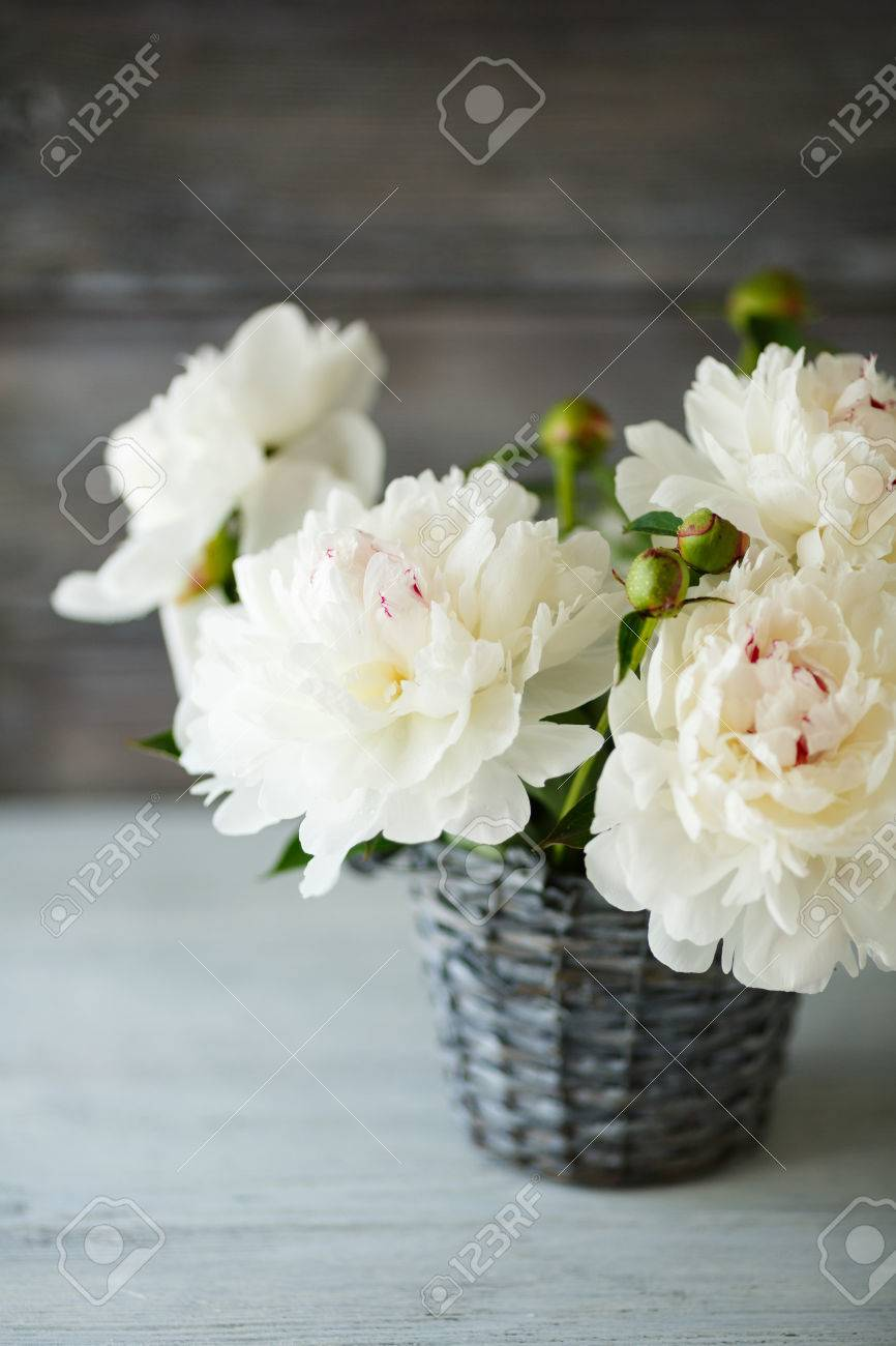 Beautiful Peonies In A Wicker Vase White Flowers Stock Photo