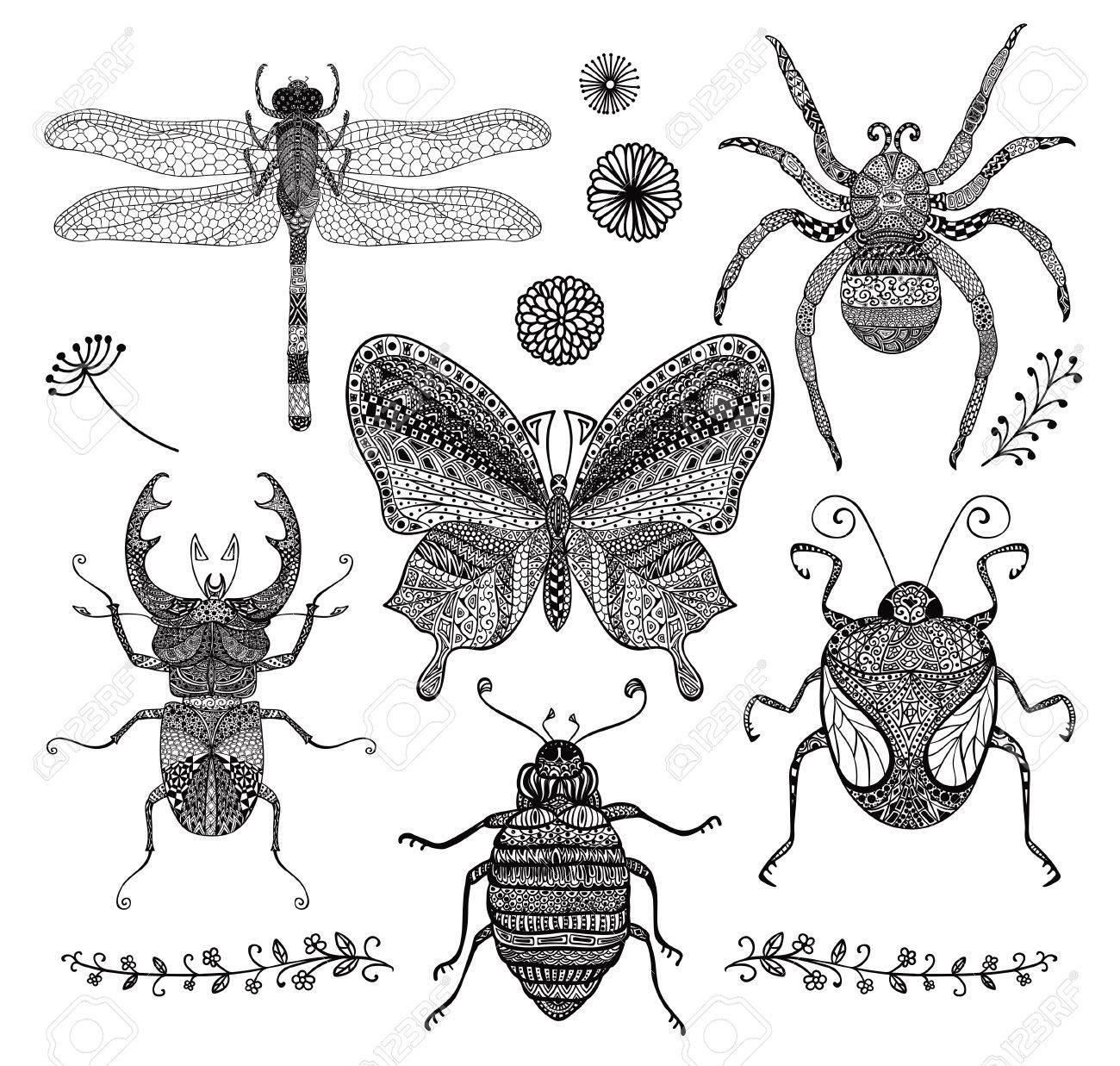 Colección De Seis Hand Drawn Doodle Negro Insectos. Decorativo De La ...