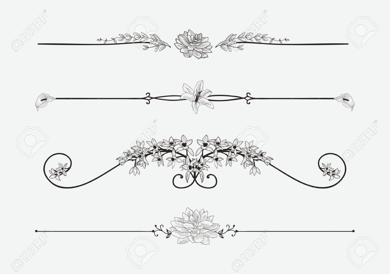 Vector Black Floral Dividers with Flowers and Swirls - 96466050