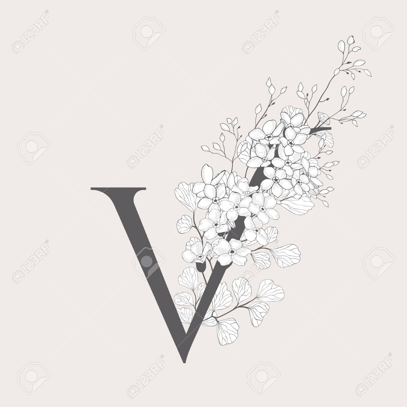 Vector Blooming Floral Initial V Monogram and Logo - 115250161