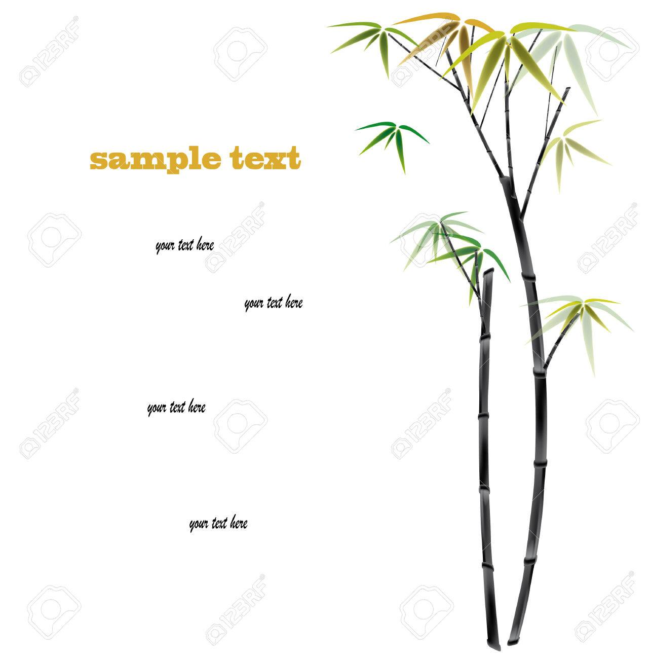 Bamboo background with copy space. vector illustration Stock Vector - 9079314