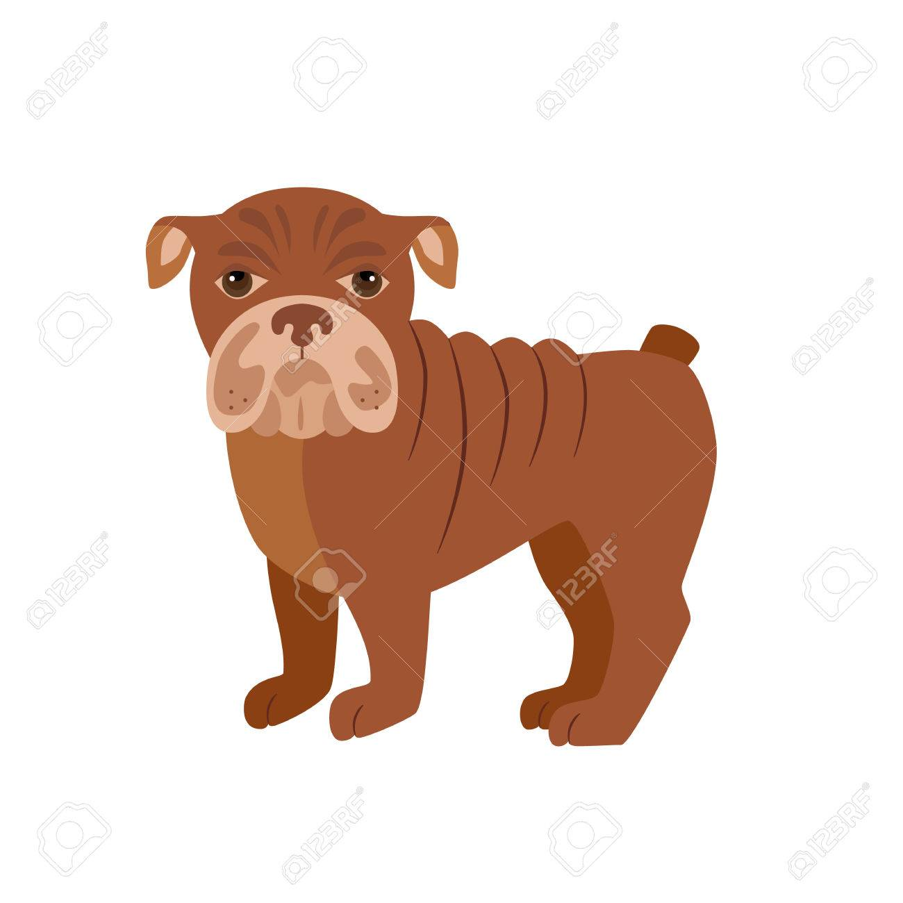 Simple Bulldog Brown Adorable Dog - 55699333-flat-bulldog-pet-illustration-standing-cute-dog-vector-flat-dog-animal-pet-vector-icon-home-cartoon-  Image_499012  .jpg