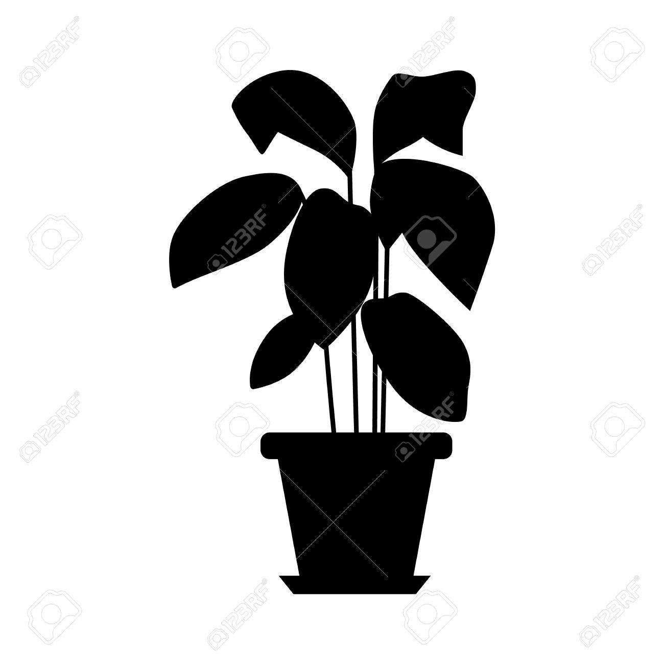 Plante En Pot Isole Vector Plante Plat Pot Illustration Concept De