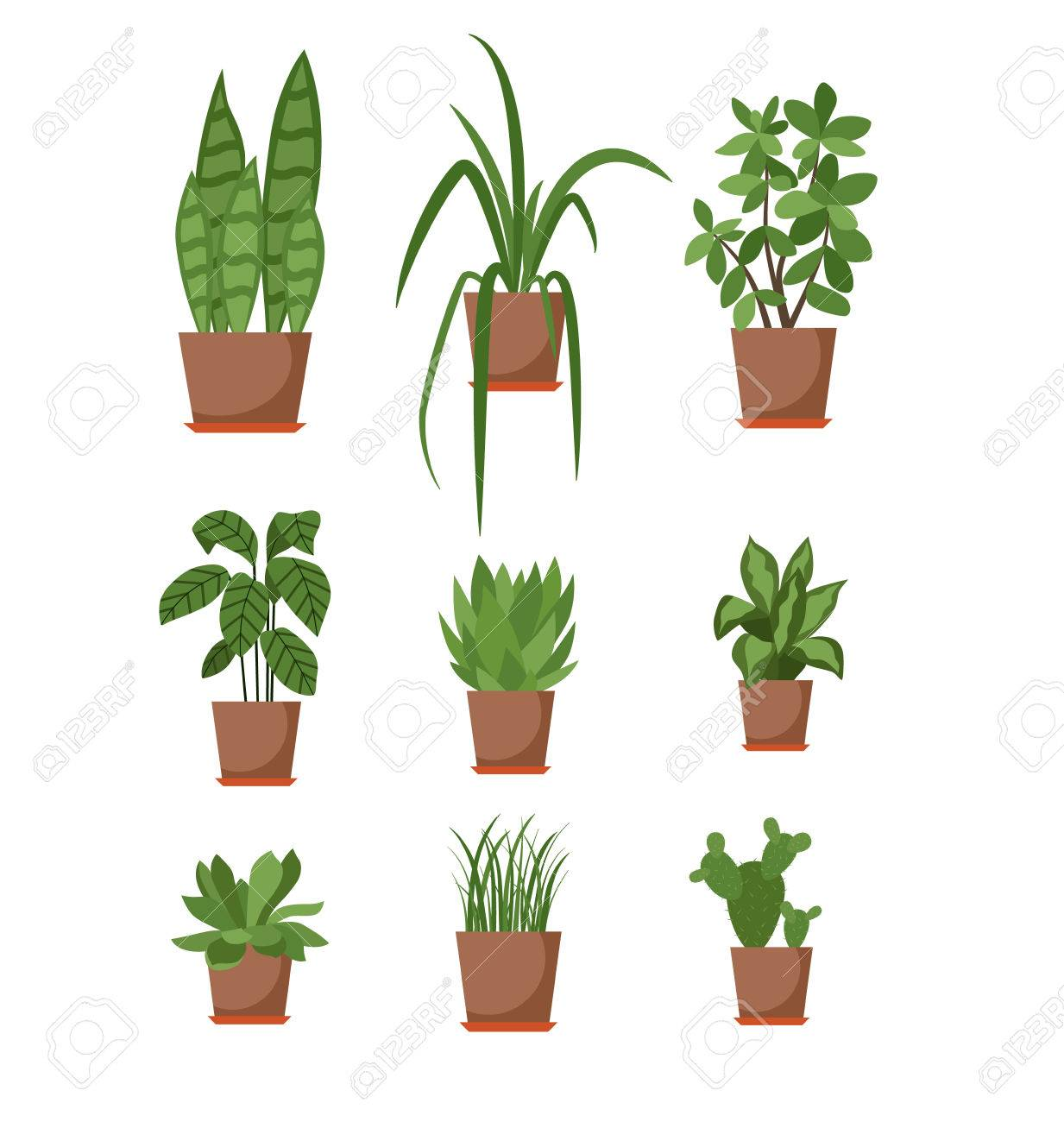 Set Of House Plant Isolated Vector Flat House Plant Pot Illustration Collection Of Flat Home Plant Pot Colorful House Plants In Pot For Your Design Home Plants Icons Set Royalty Free Cliparts