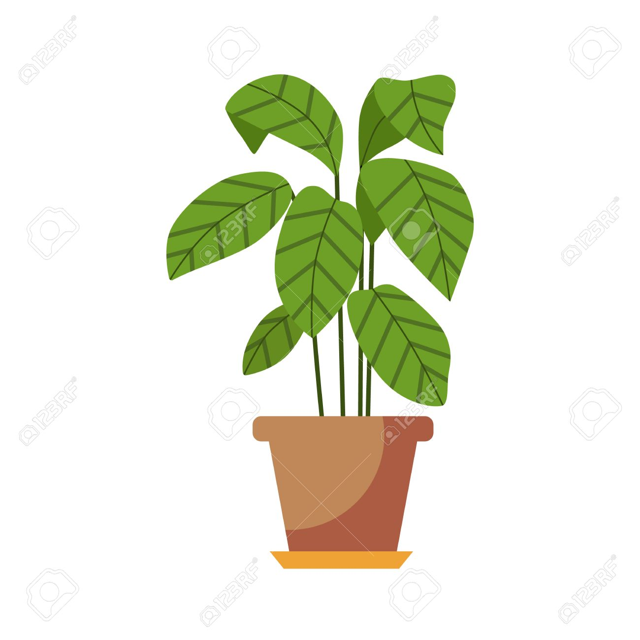 Indoor Plant Isolated. Vector Flat Indoor Plant Pot Illustration ...