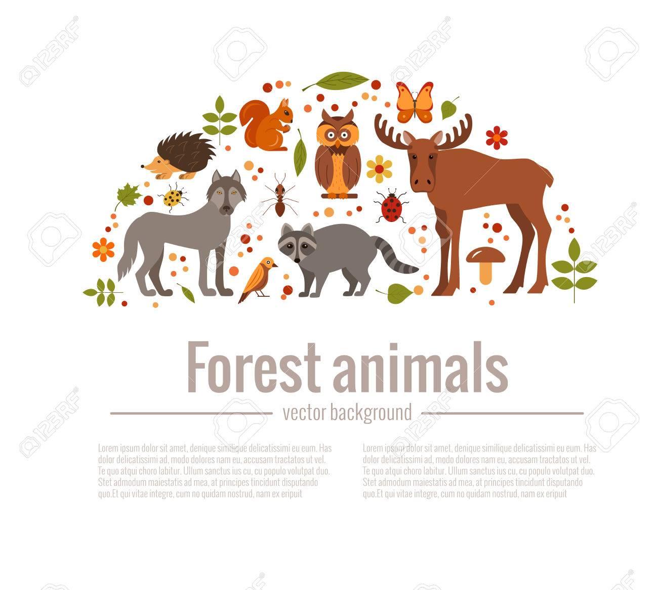Vector Cartoon Flachen Stil Satz Von Waldtieren Plakat Vorlage. Zoo ...