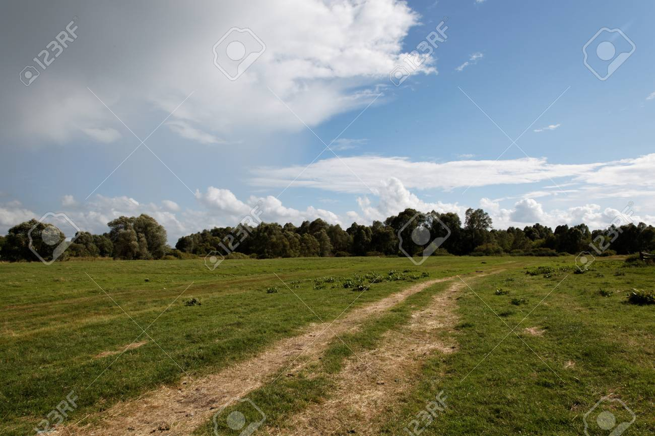 Summer landscape with green grass, road and clouds Stock Photo - 14858226