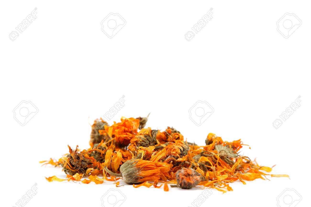 Herbs. Dried calendula or pot marigold flowers isolated on white background. - 17825370