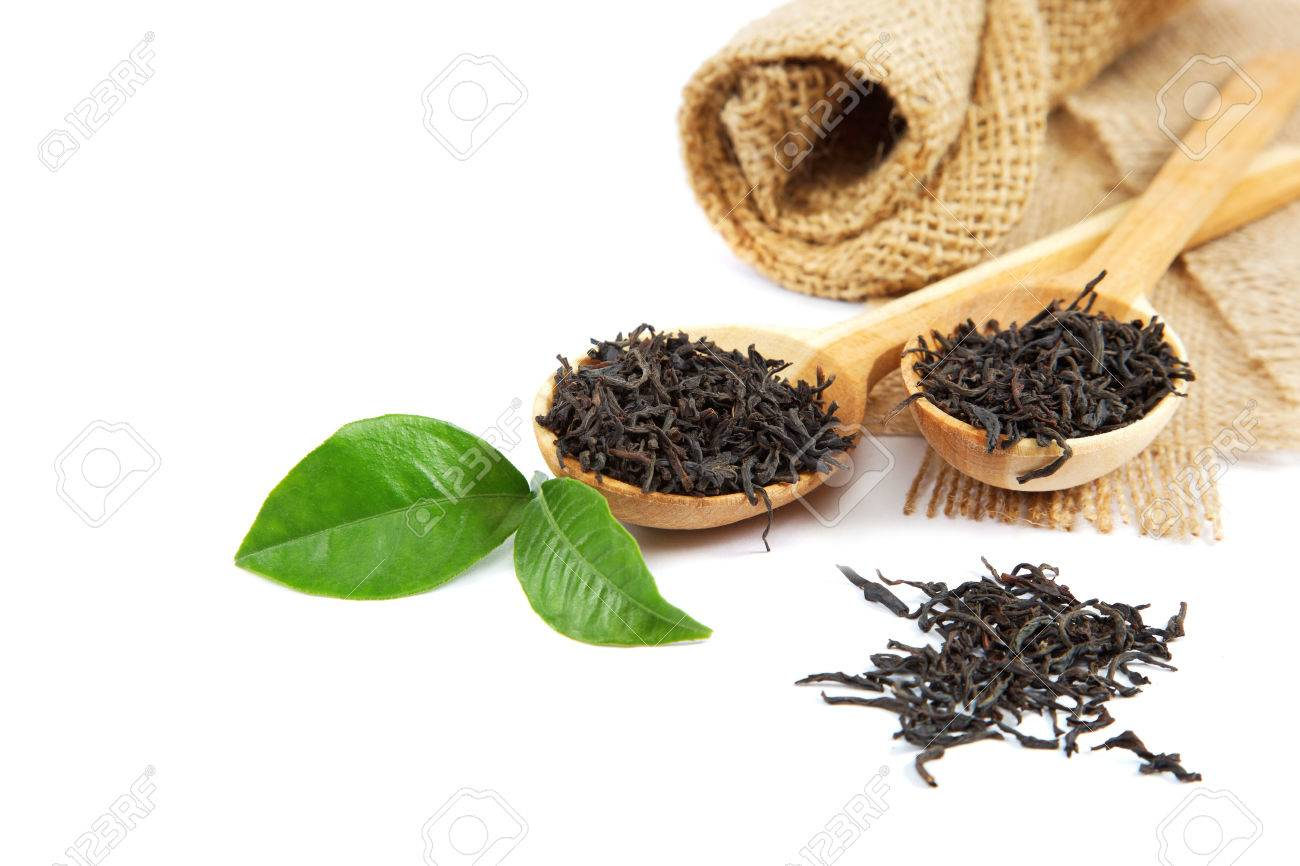 Black tea in a wooden spoon and green lemon leaves isolated on a white background. - 31101393