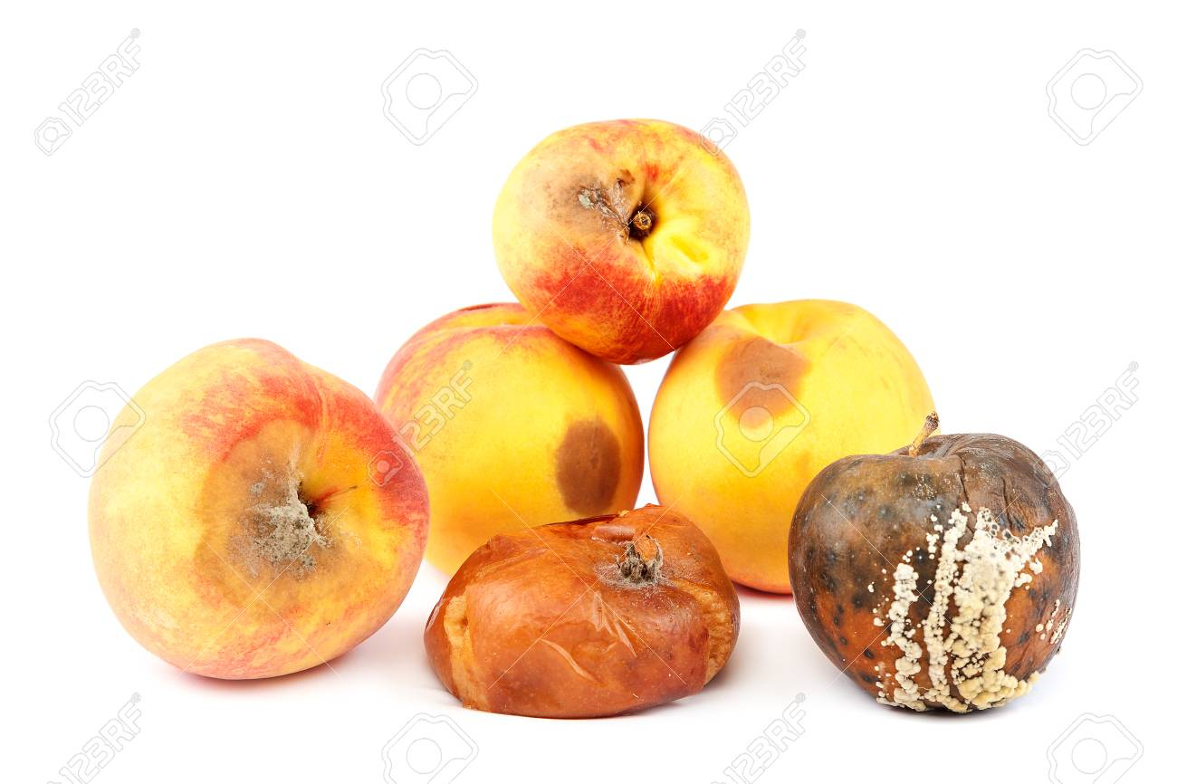 Fruits of an apple and peach with rot isolated on white background. - 103690895