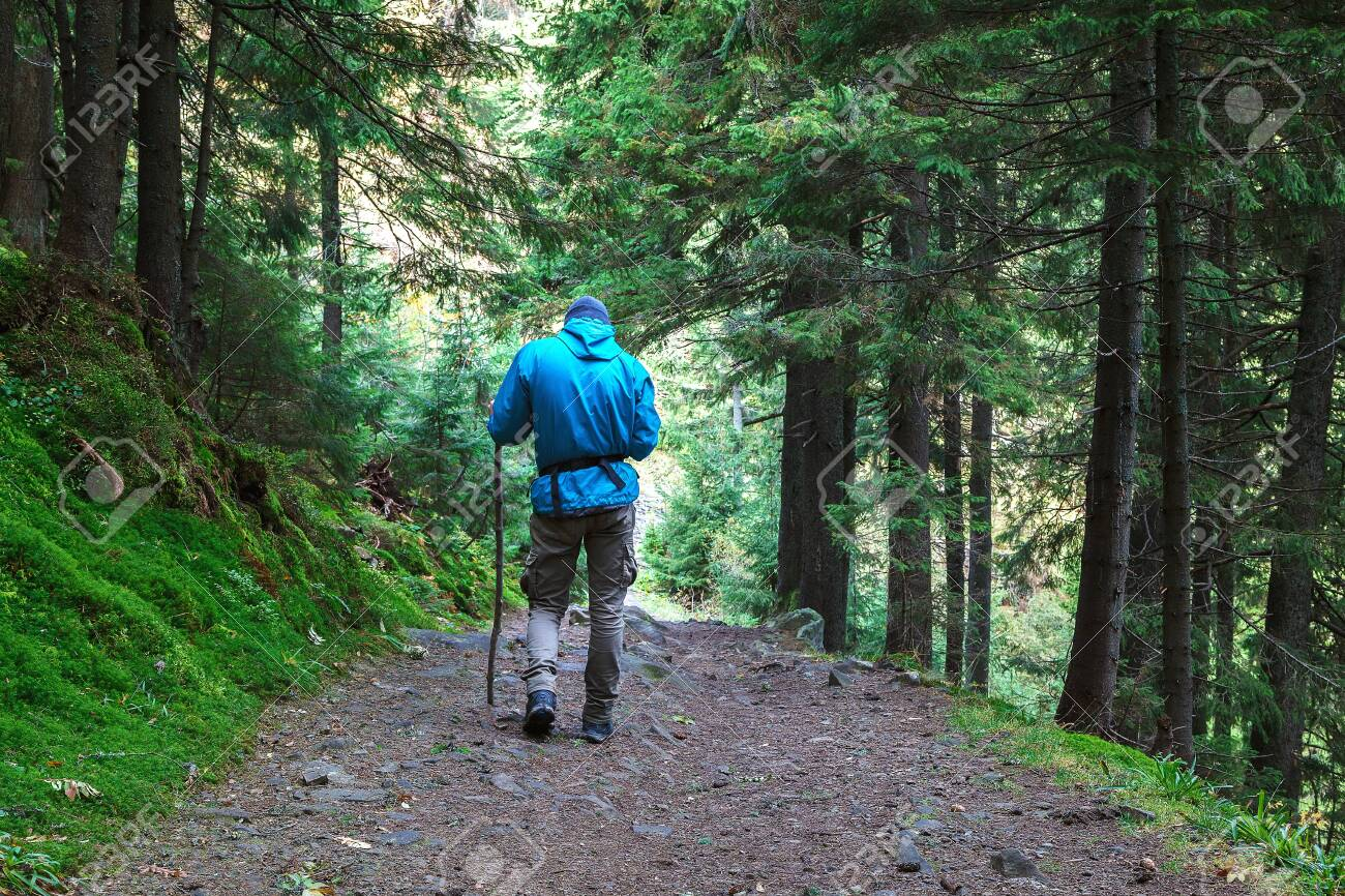 Lone traveler on a forest trail in the mountains. - 154785777
