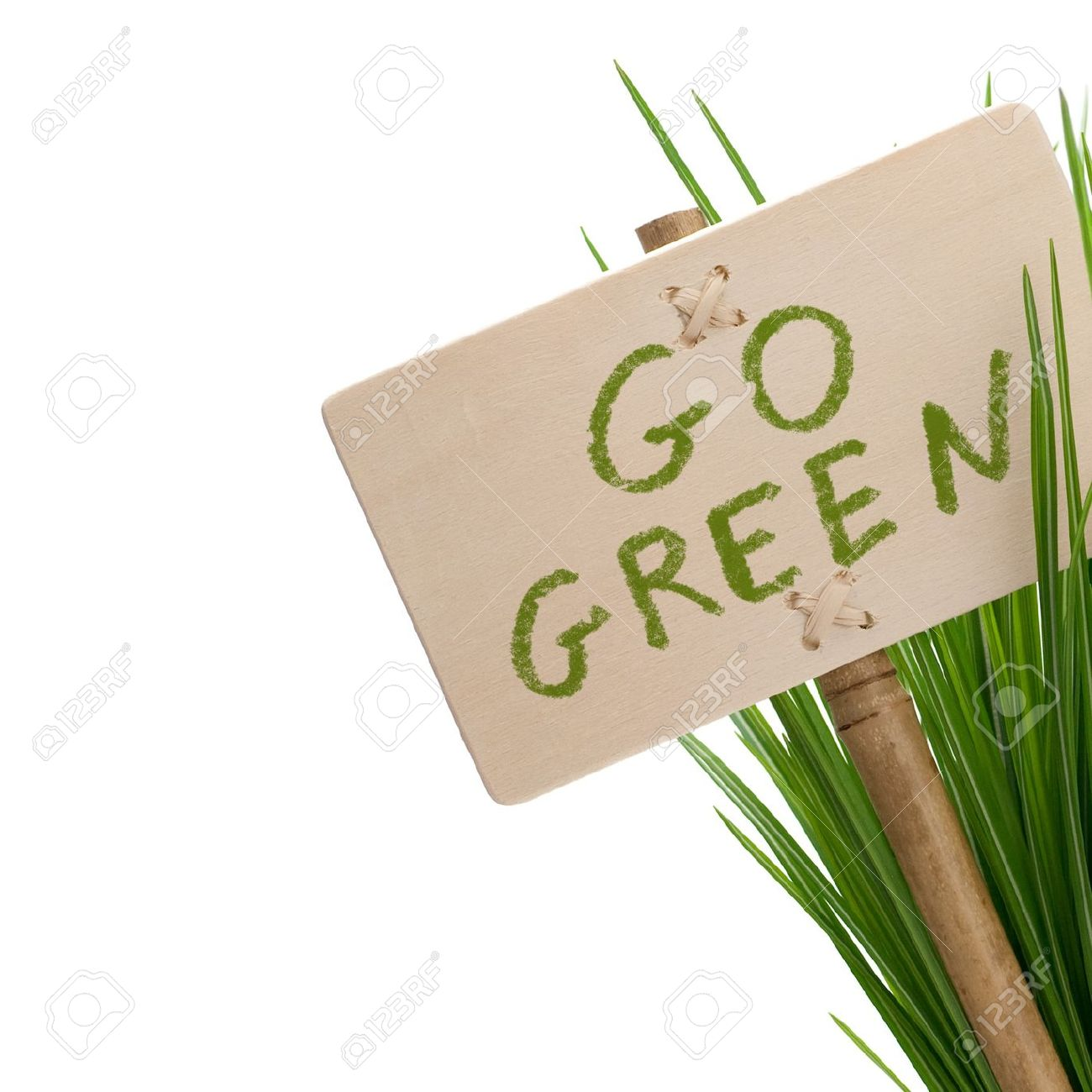 go green message on a wooden panel and green plant - image is isolated on a white background Stock Photo - 7022978