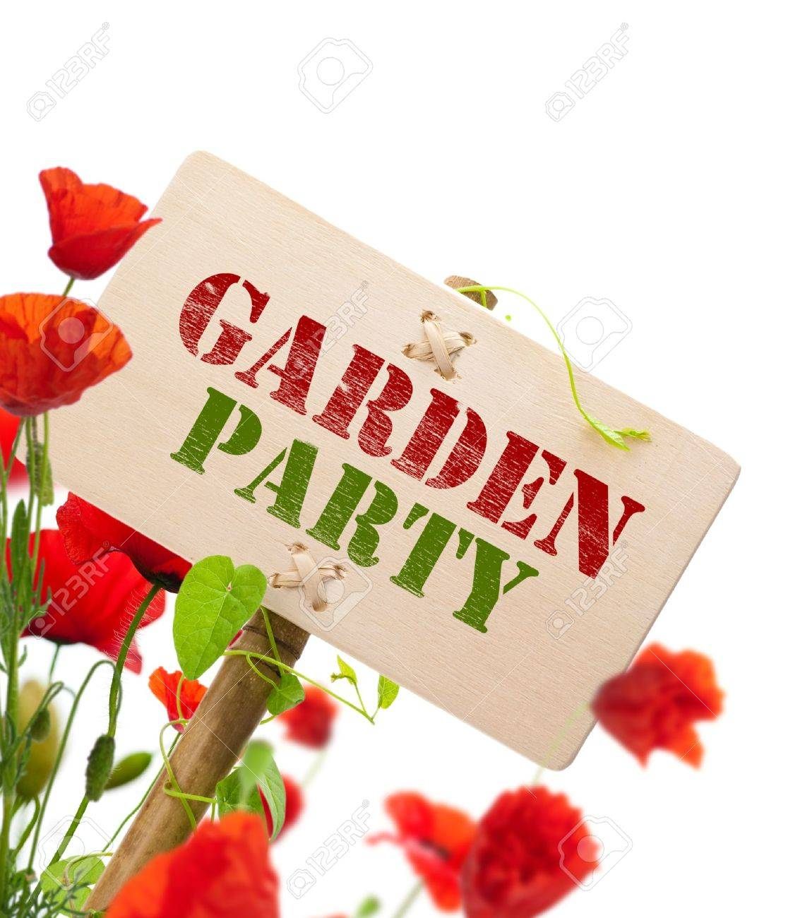 Garden party sign, message on a wooden panel, green plant and poppies - image is isolated on a white background Stock Photo - 9013881