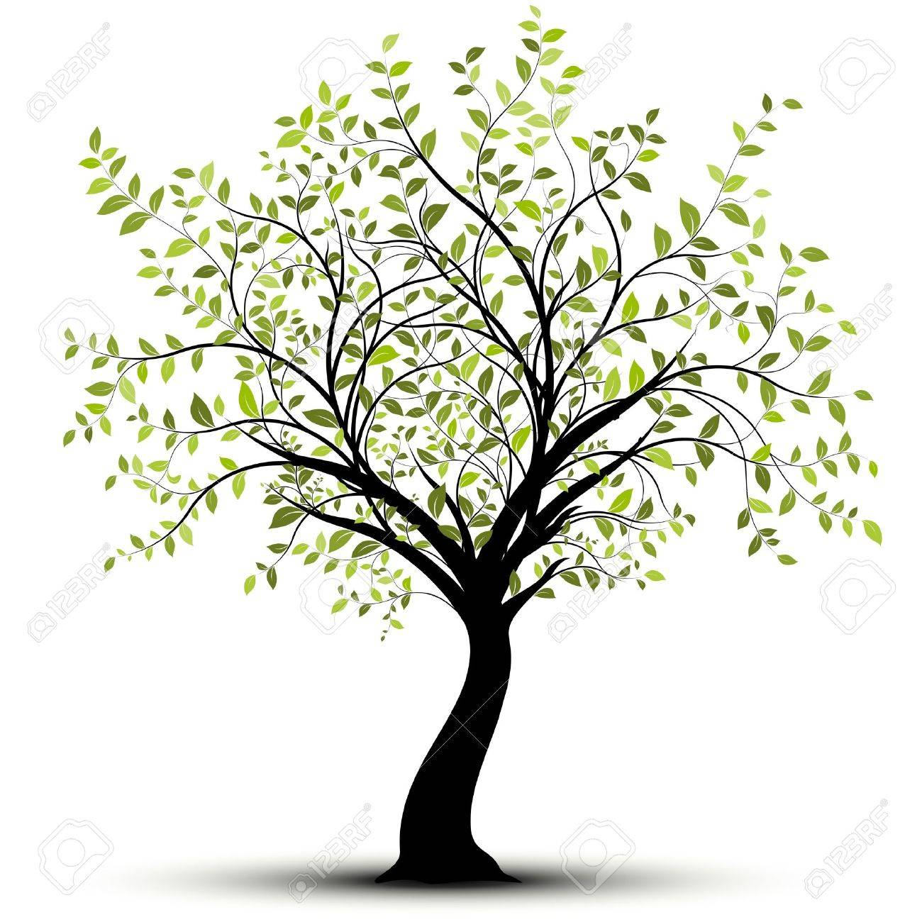 Green tree over white background Stock Vector - 10932990