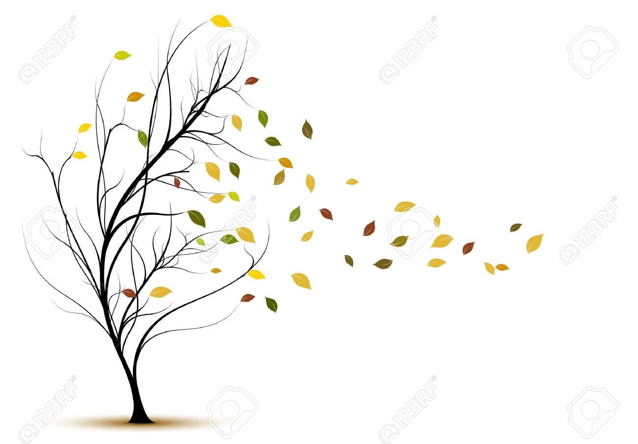 184,550 Tree Silhouette Cliparts, Stock Vector And Royalty Free ...