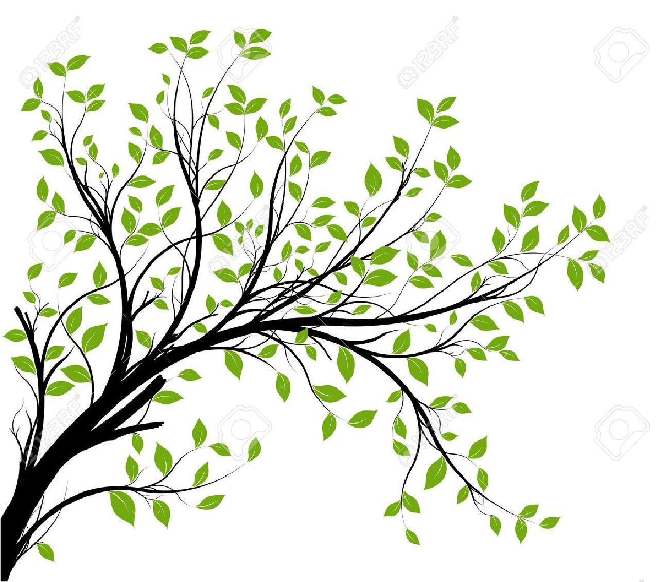 Branch Silhouette